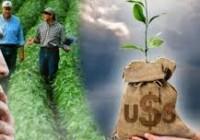 Del cultivo de alfalfa al negocio de la exportación
