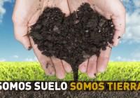 Jornadas SUELO 2020 / Inscripciones