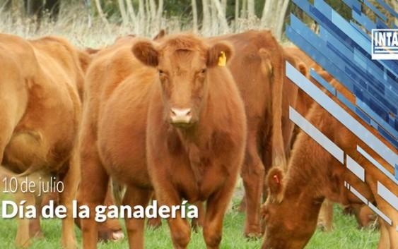 Dia de la ganaderia