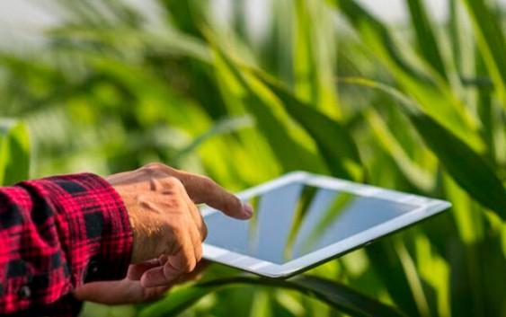 Tecnologías de la información en el Agro: ¿hacia dónde vamos?