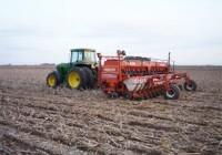 El clima no juega a favor del maíz y las decisiones sobre su siembra no son tan claras