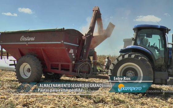 Almacenamiento seguro de granos