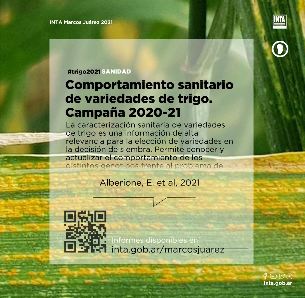 Comportamiento sanitario de variedades de trigo. Campaña 2020/21
