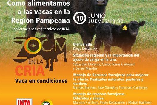 Como alimentar a las vacas en la region Pampeana