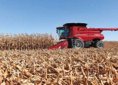 Proyecciones de soja, maíz y trigo de USDA